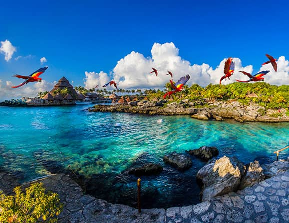 Hotel-Xcaret-Mexico-All-Inclusive